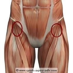 flexor cadera