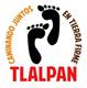 Delegación Tlalpan